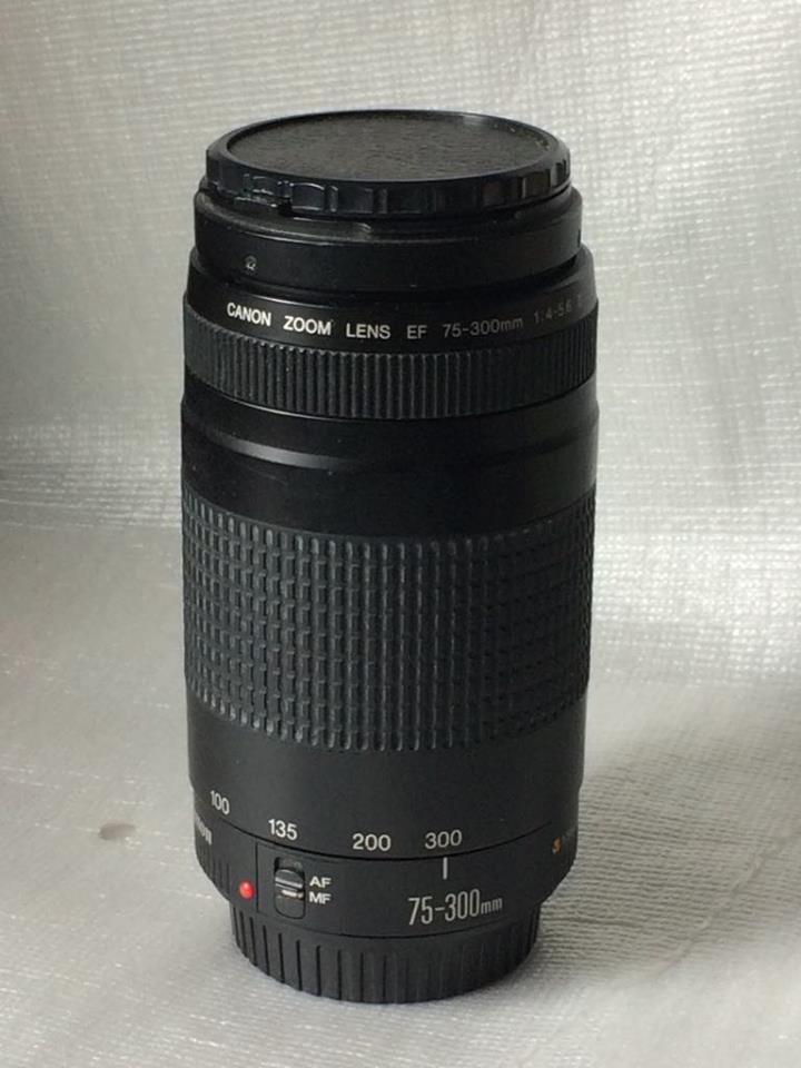 Obbiettivo rotto Canon zoom EF 70/300  f4 5.6
